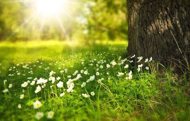 ניהול בריחת שתן במהלך חודשי הקיץ: טיפים להישאר יבשים